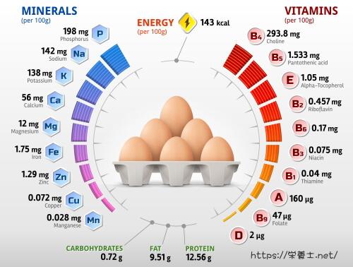 卵のビタミンとミネラル一覧。岩手県にある管理栄養士の大学。昼間・夜間・通信教育